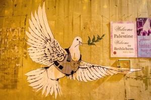 فلسطين للمبتدئين